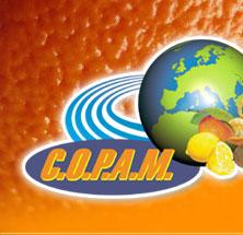 C.O.P.A.M. - Consorzio Ortofrutticolo Produttori Agrumicoli Meridionali.